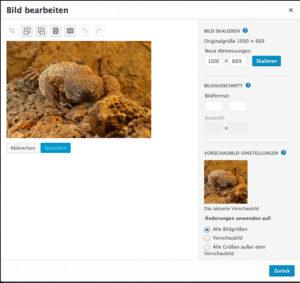 Bilder in WordPress bearbeiten: zuschneiden, drehen, skalieren