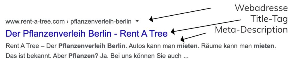 Serp-Snippet - Google Suchergebnis